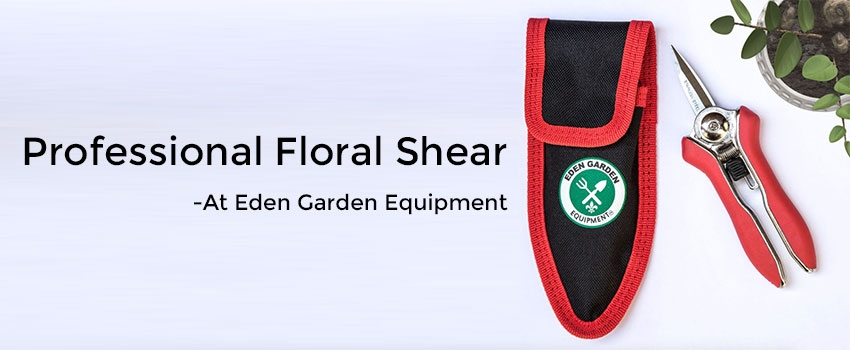 Professional Floral Shear